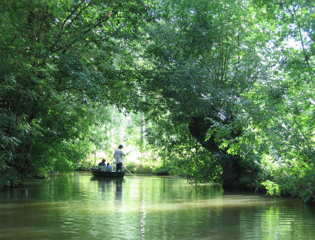 Vous pouvez découvrir, en barque, le maris poitevin. Photo Gilbert Bochenek
