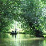 Vendée : trois bons plans pour un week-end